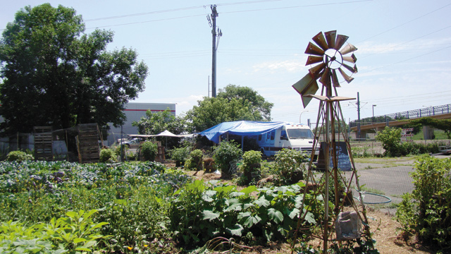 Locally Sourced: Growing Lots Urban Farm