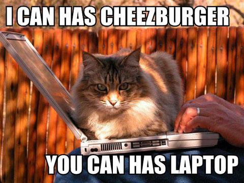 Photo from www.icanhascheezburger.com