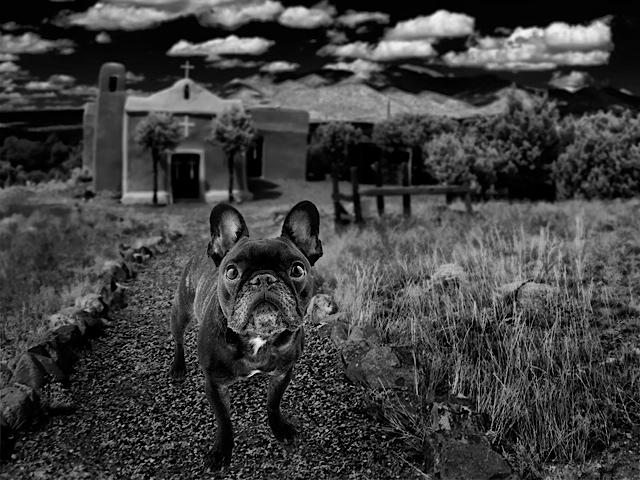 Photo by Jim Gallop
