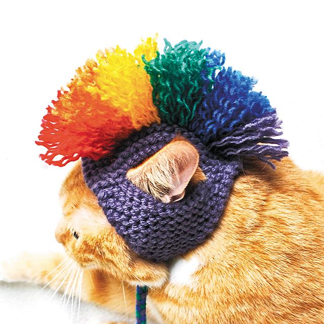 Cat-Rainbow-Mohawk-Hat