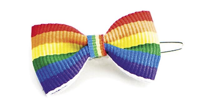 Rainbow-Designer-Dog-Bows