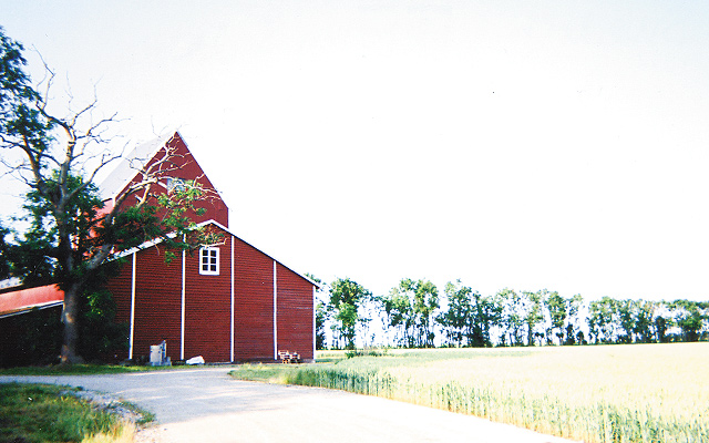 Swedish country side near Malmö. Photos by Carla Waldemar