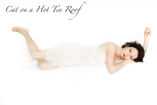 Cat on a Hot Tin Roof. Photo by Michal Daniel