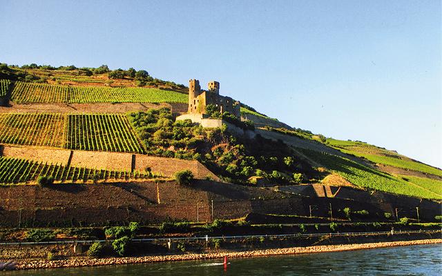 Castle along the Rhine. Photo by Carla Waldemar