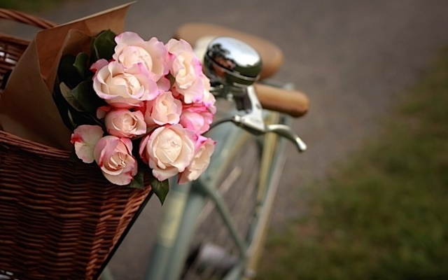 Photo courtesy of My City Bikes.
