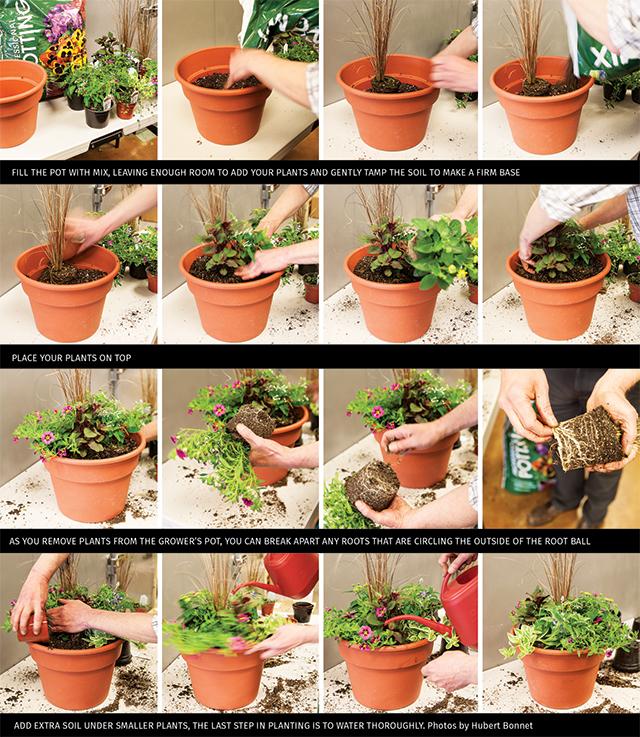 Gardening-Step-by-Step