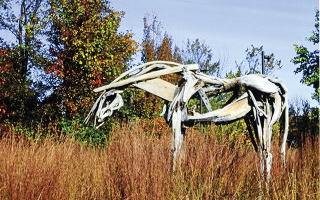 Deborah Butterfield's iconic horse in Frederik Meijer Scupture Garden. Photo by Carla Waldemar
