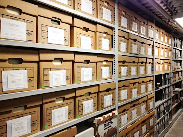 The Tretter Collection currently has 3000 linear feet of boxes of material. Photo by Lisa-Vecoli