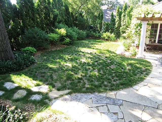 Fescue Grass Planting. Photo courtesy of Southview Design