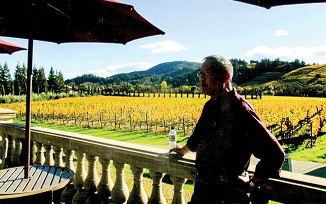 Overlooking the vineyards at Ferrari Cavano Winery outside Healdsburg, California.