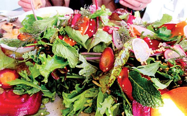 Namesake Shed Salad at Shed Restaurant in Healdsburg, California