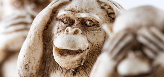 MonkeySee-MonkeyDo