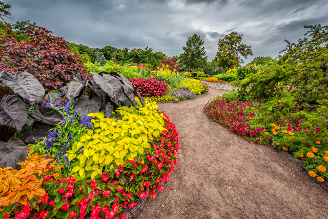 The Minnesota Landscape Arboretum offers a full range of classes for adults in horticulture and gardening. Photo by Jason Boudreau-Landis
