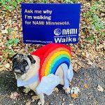 Serve Our Society: National Alliance on Mental Illness Minnesota